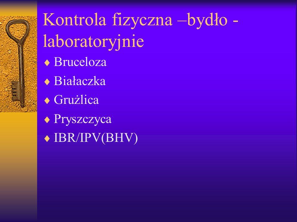 Kontrola fizyczna –bydło -laboratoryjnie