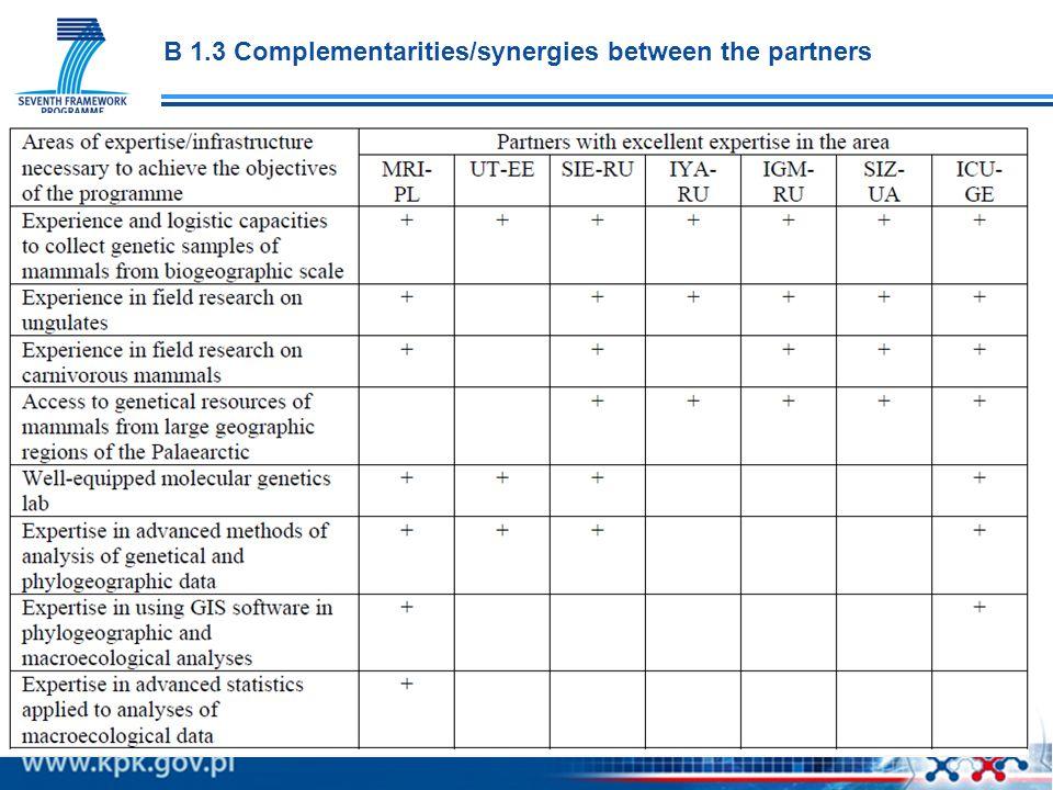 B 1.3 Complementarities/synergies between the partners