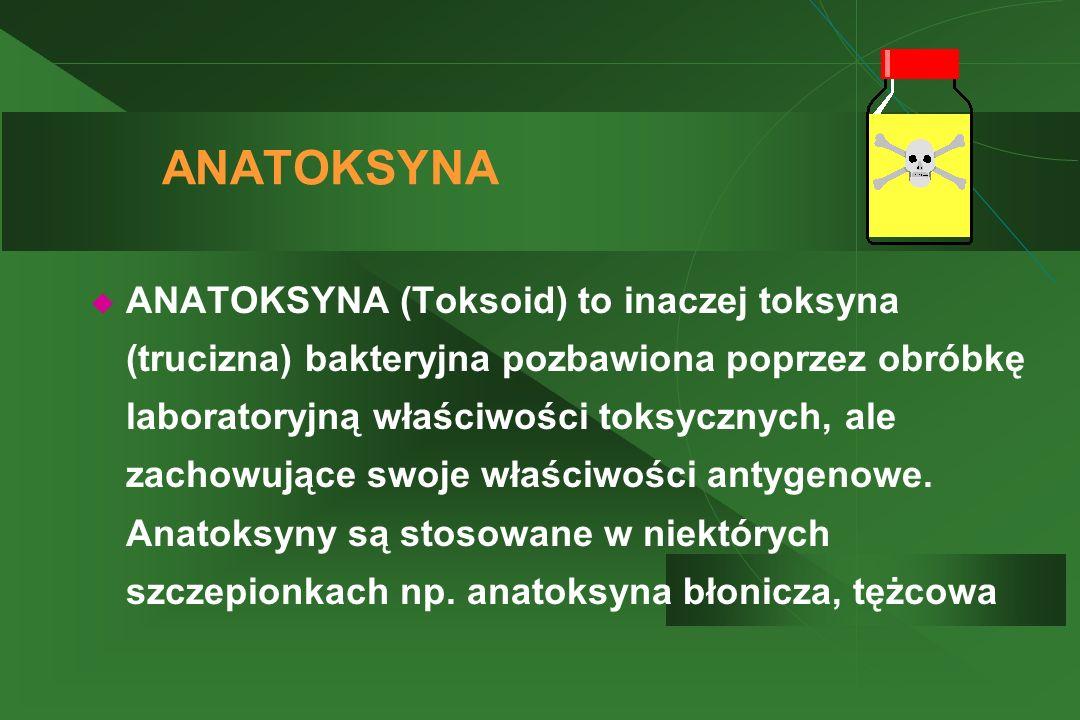ANATOKSYNA