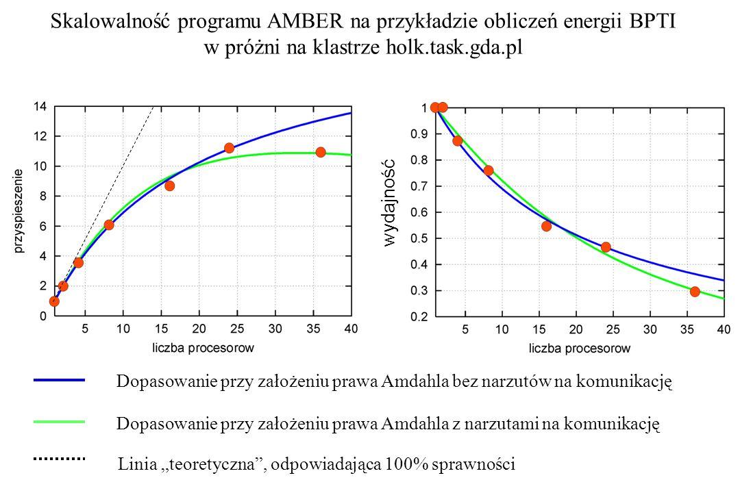 Skalowalność programu AMBER na przykładzie obliczeń energii BPTI w próżni na klastrze holk.task.gda.pl