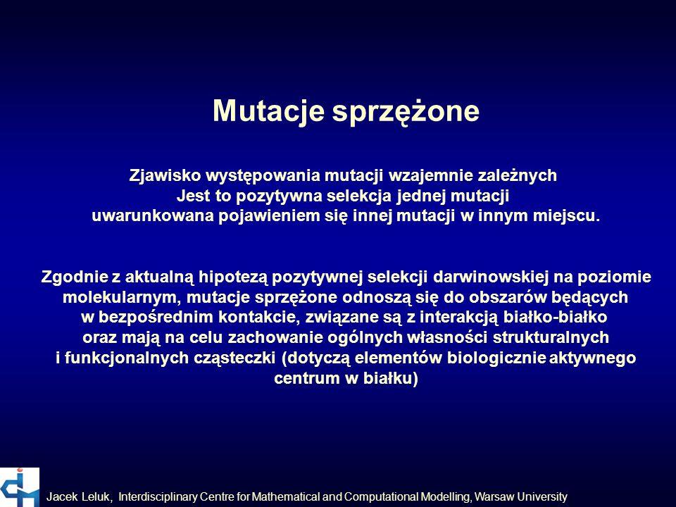 Mutacje sprzężone Zjawisko występowania mutacji wzajemnie zależnych