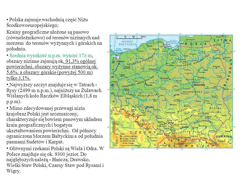 Polska zajmuje wschodnią część Niżu Środkowoeuropejskiego;