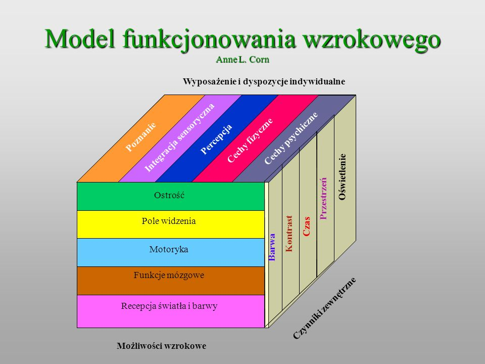 Wyposażenie i dyspozycje indywidualne Integracja sensoryczna