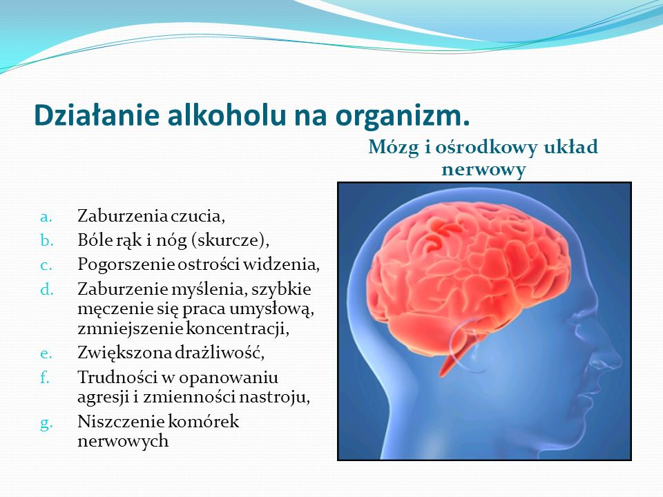 Działanie alkoholu na organizm.