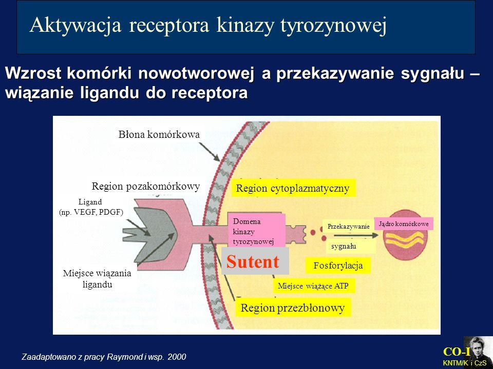 Aktywacja receptora kinazy tyrozynowej