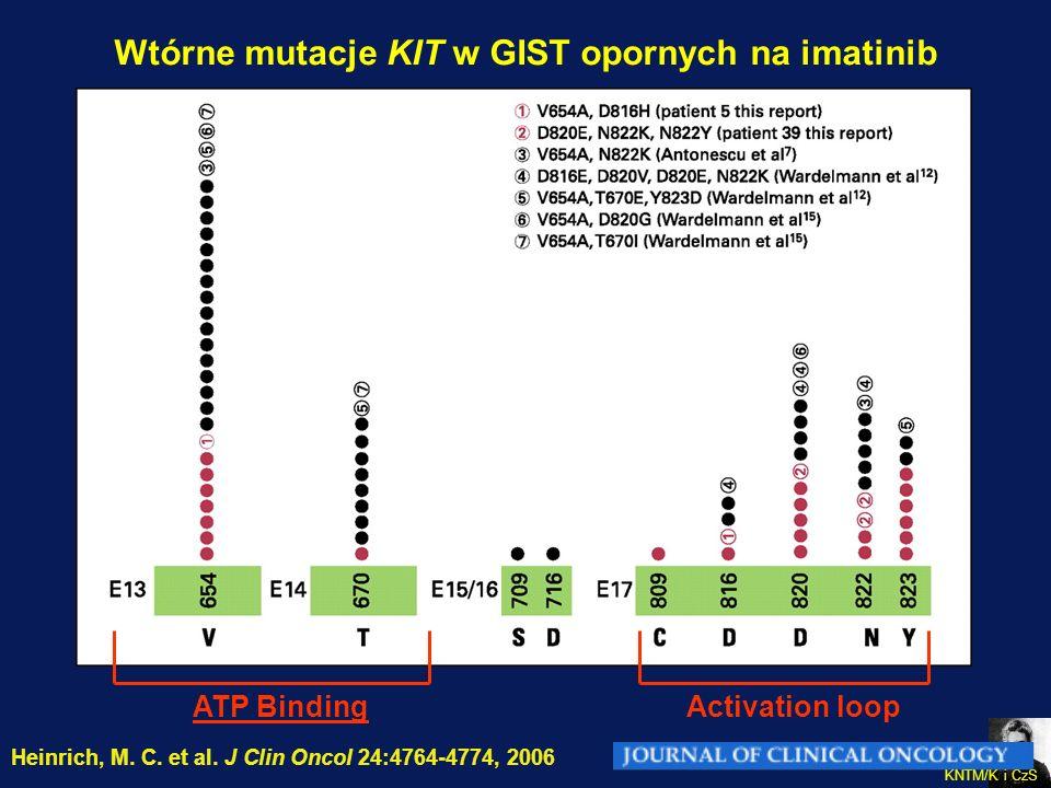Wtórne mutacje KIT w GIST opornych na imatinib