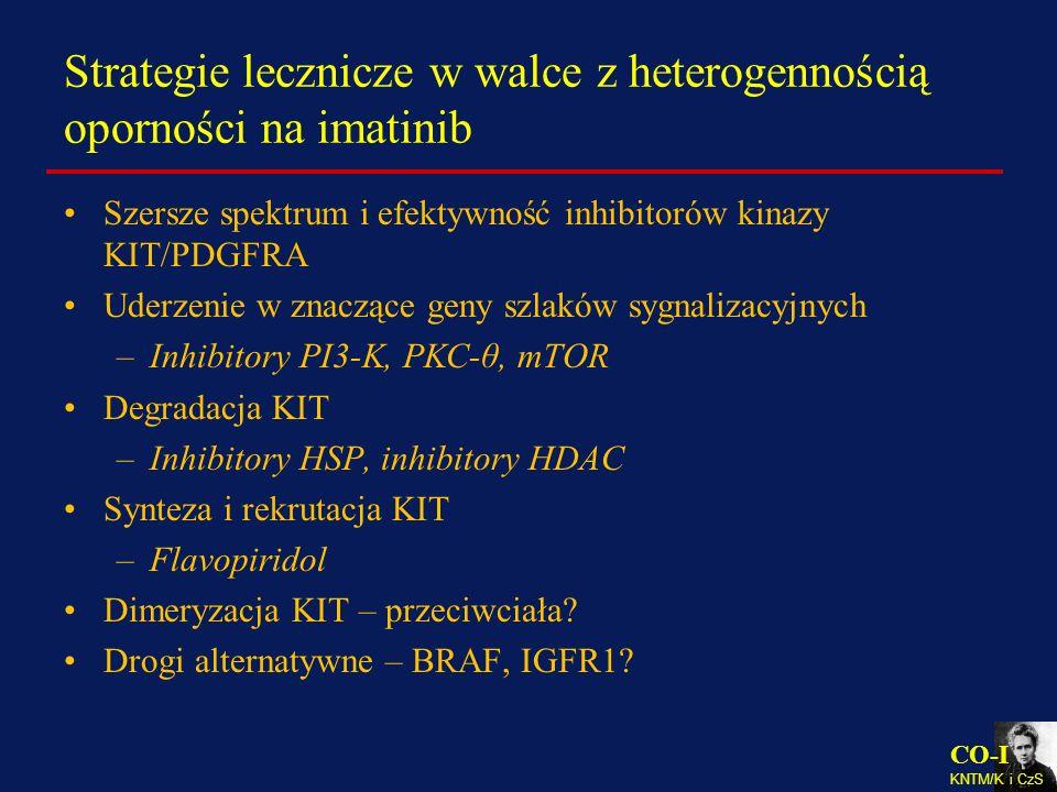 Strategie lecznicze w walce z heterogennością oporności na imatinib