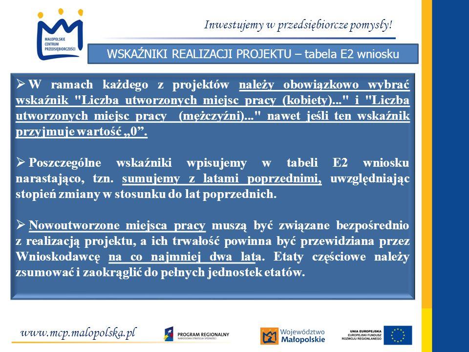 WSKAŹNIKI REALIZACJI PROJEKTU – tabela E2 wniosku