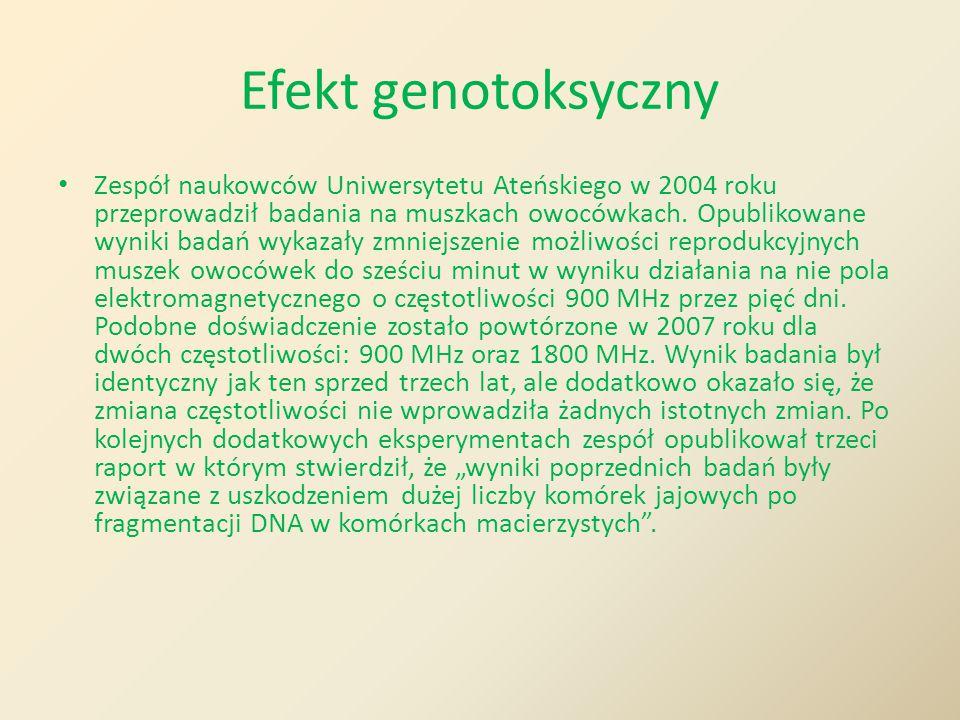 Efekt genotoksyczny