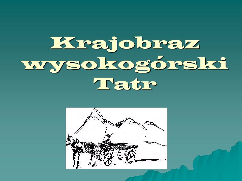 Krajobraz wysokogórski Tatr