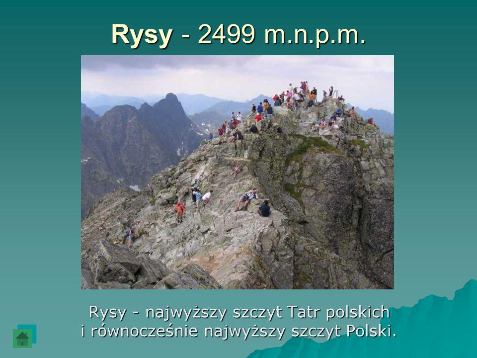 Rysy - 2499 m.n.p.m. Rysy - najwyższy szczyt Tatr polskich