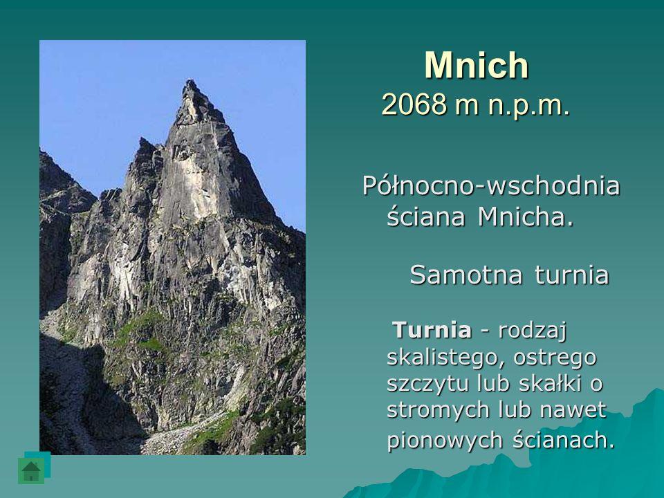 Mnich 2068 m n.p.m. Północno-wschodnia ściana Mnicha. Samotna turnia