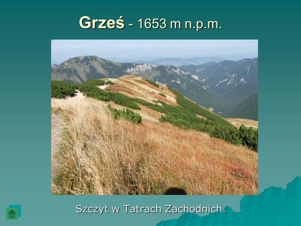 Szczyt w Tatrach Zachodnich.