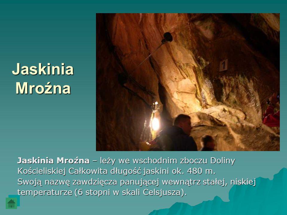Jaskinia Mroźna Jaskinia Mroźna – leży we wschodnim zboczu Doliny