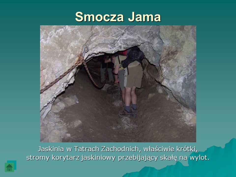 Smocza Jama Jaskinia w Tatrach Zachodnich, właściwie krótki,
