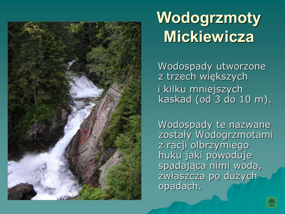 Wodogrzmoty Mickiewicza