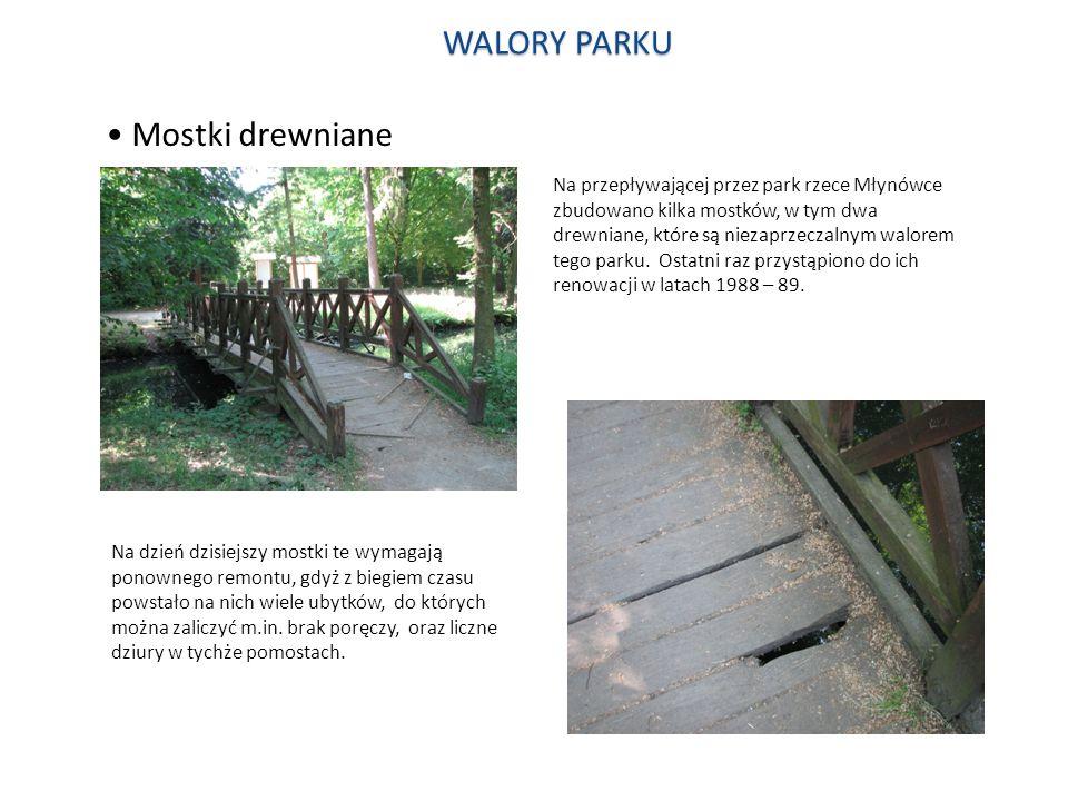 WALORY PARKU Mostki drewniane