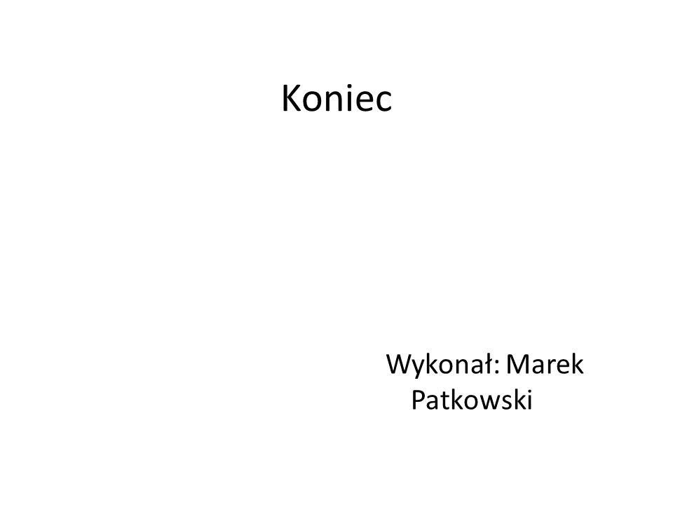 Koniec Wykonał: Marek Patkowski