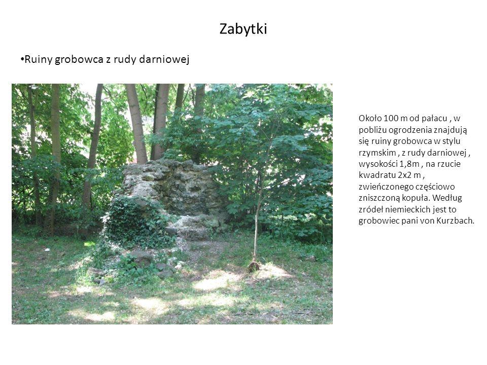 Zabytki Ruiny grobowca z rudy darniowej