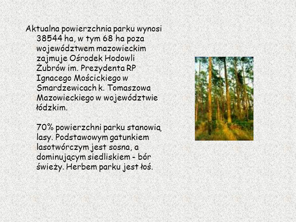 Aktualna powierzchnia parku wynosi 38544 ha, w tym 68 ha poza województwem mazowieckim zajmuje Ośrodek Hodowli Żubrów im.