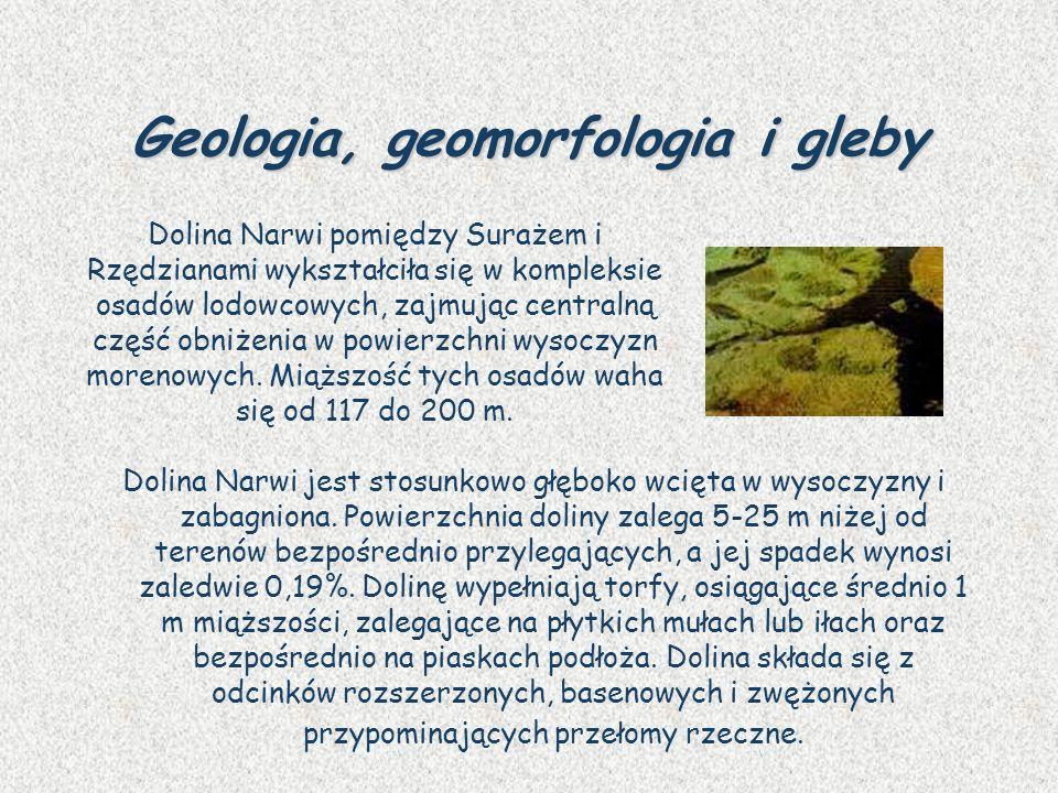 Geologia, geomorfologia i gleby