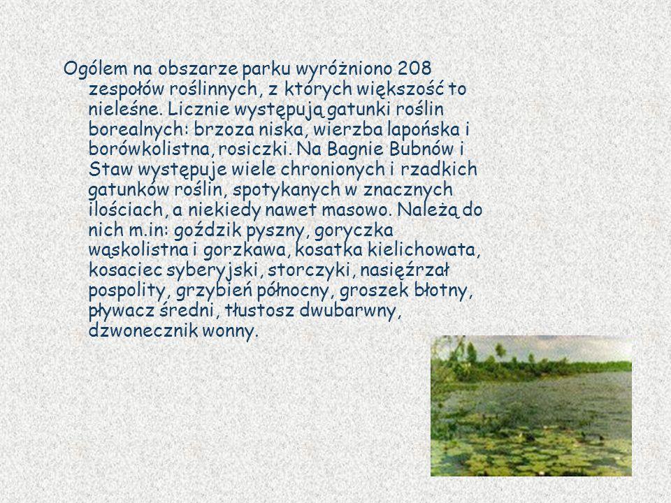 Ogólem na obszarze parku wyróżniono 208 zespołów roślinnych, z których większość to nieleśne.