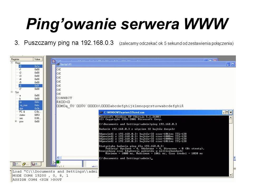 Ping'owanie serwera WWW
