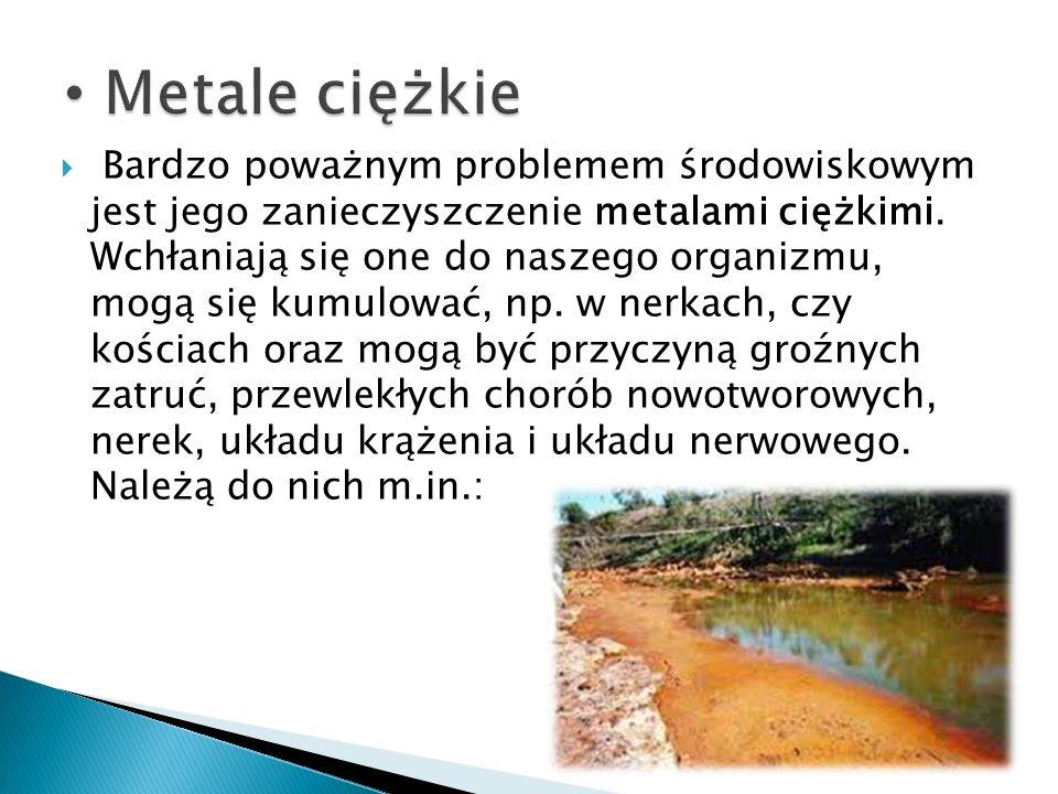 Metale ciężkie