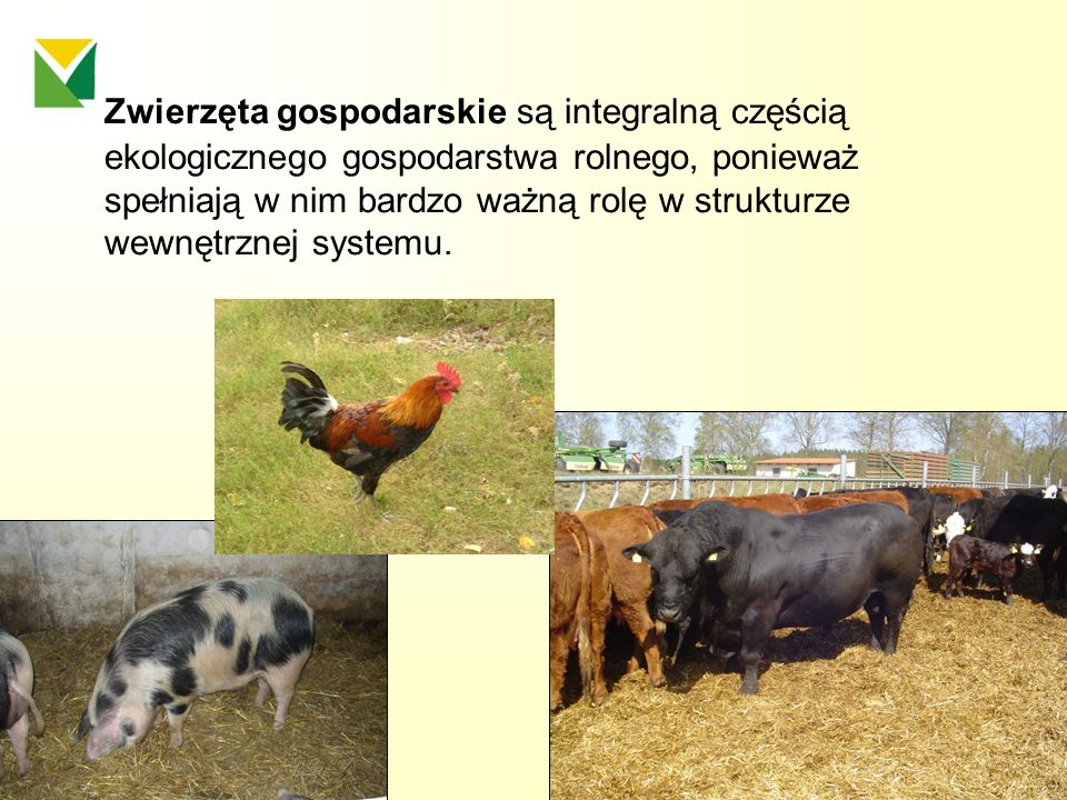 Zwierzęta gospodarskie są integralną częścią ekologicznego gospodarstwa rolnego, ponieważ spełniają w nim bardzo ważną rolę w strukturze wewnętrznej systemu.