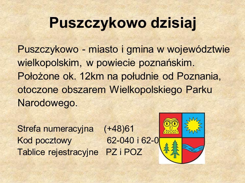 Puszczykowo dzisiaj Puszczykowo - miasto i gmina w województwie