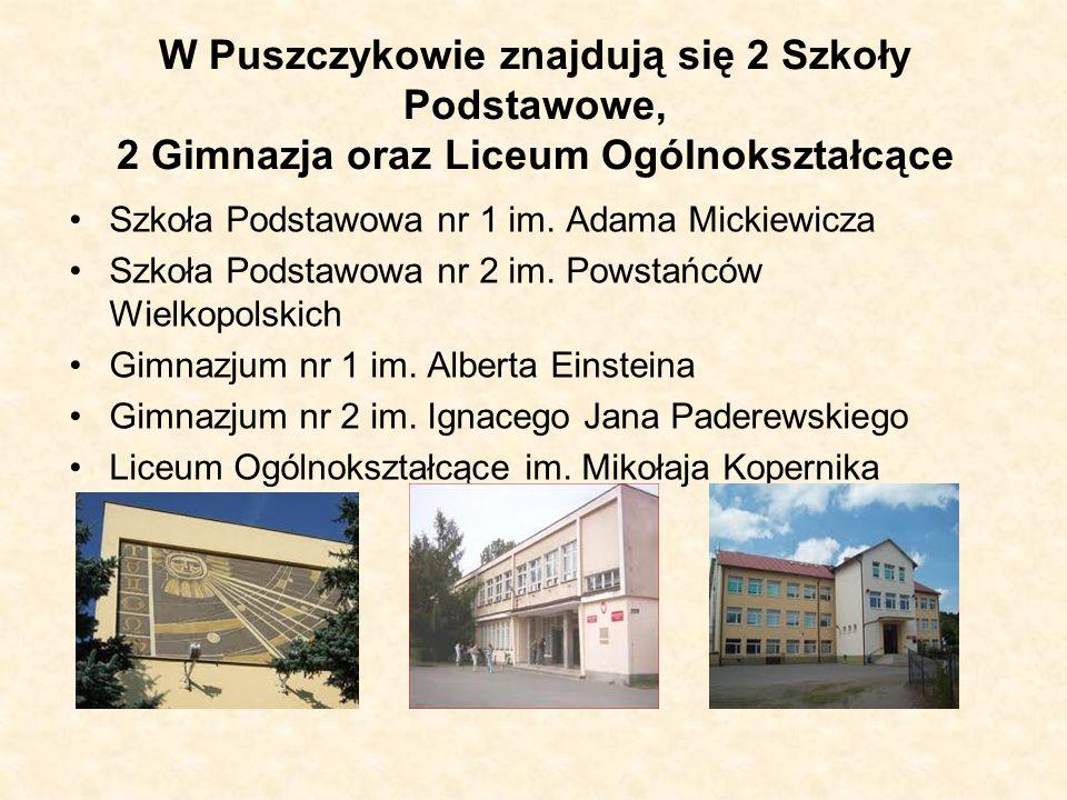 W Puszczykowie znajdują się 2 Szkoły Podstawowe, 2 Gimnazja oraz Liceum Ogólnokształcące