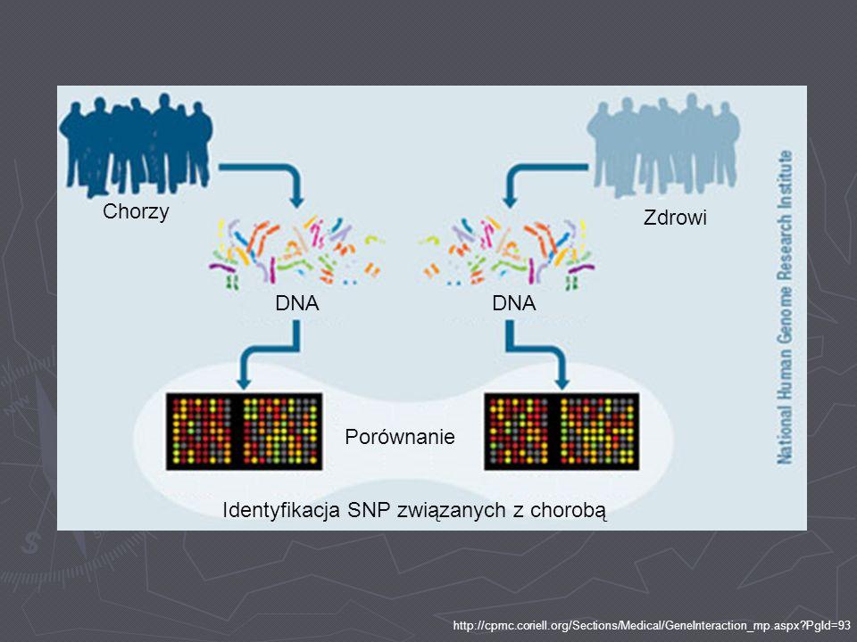 Identyfikacja SNP związanych z chorobą