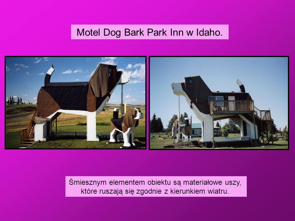 Motel Dog Bark Park Inn w Idaho.