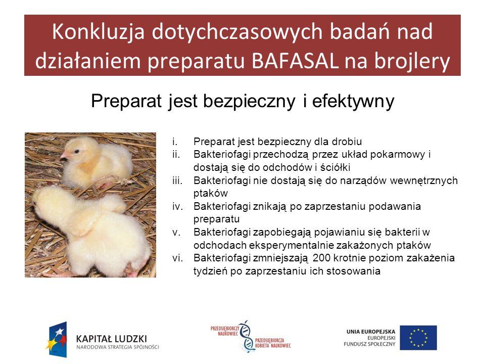 Konkluzja dotychczasowych badań nad działaniem preparatu BAFASAL na brojlery