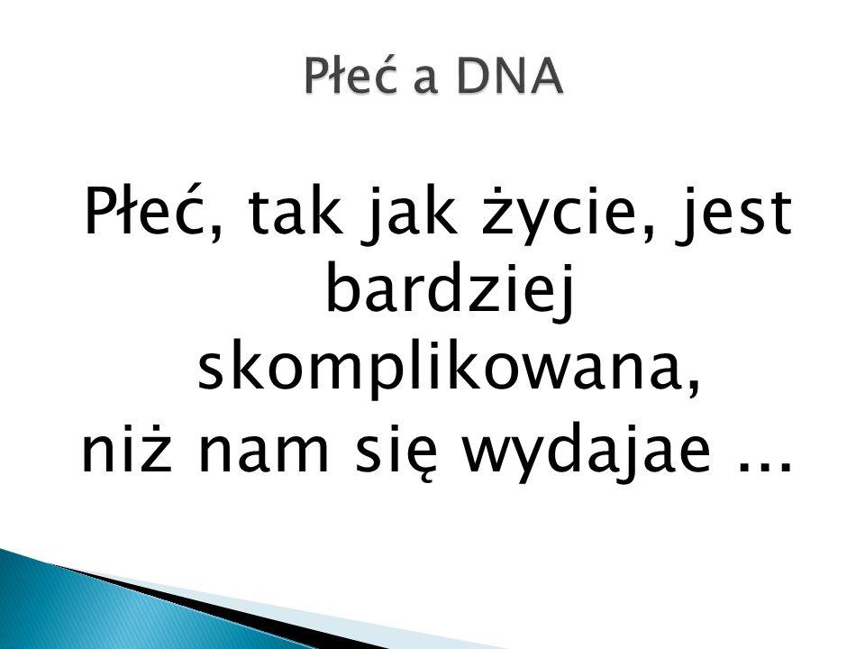 Płeć a DNA Płeć, tak jak życie, jest bardziej skomplikowana, niż nam się wydajae ...