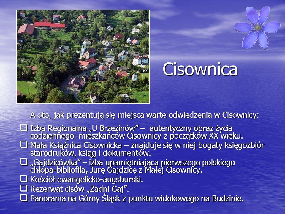 Cisownica A oto, jak prezentują się miejsca warte odwiedzenia w Cisownicy: