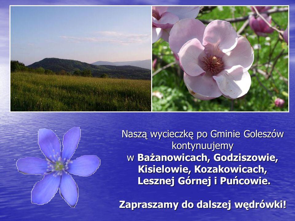 Naszą wycieczkę po Gminie Goleszów kontynuujemy w Bażanowicach, Godziszowie, Kisielowie, Kozakowicach, Lesznej Górnej i Puńcowie.