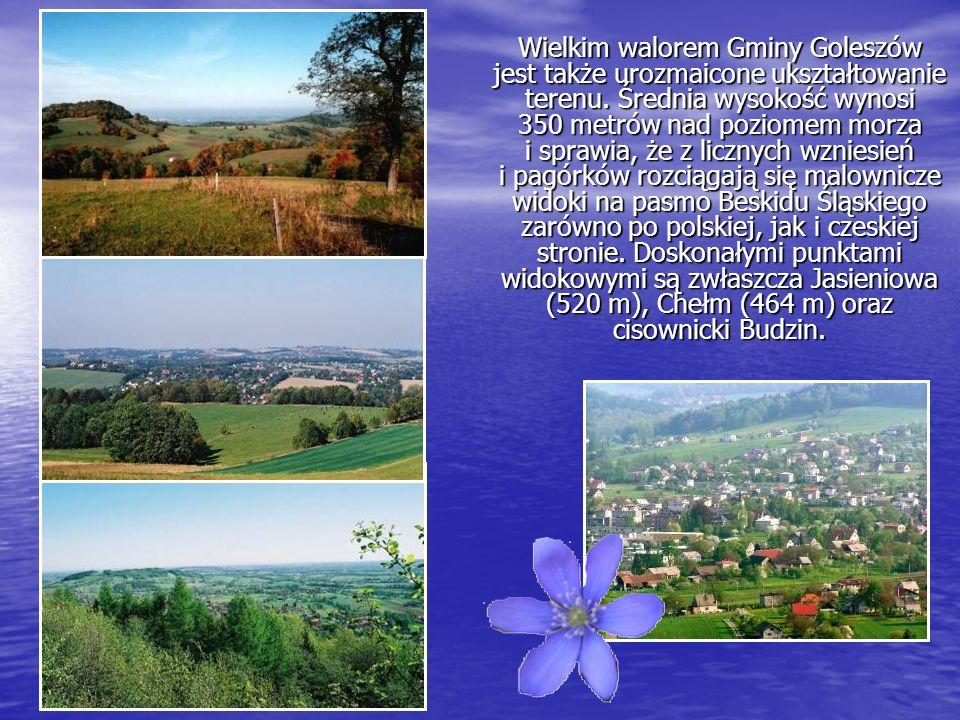 Wielkim walorem Gminy Goleszów jest także urozmaicone ukształtowanie terenu.