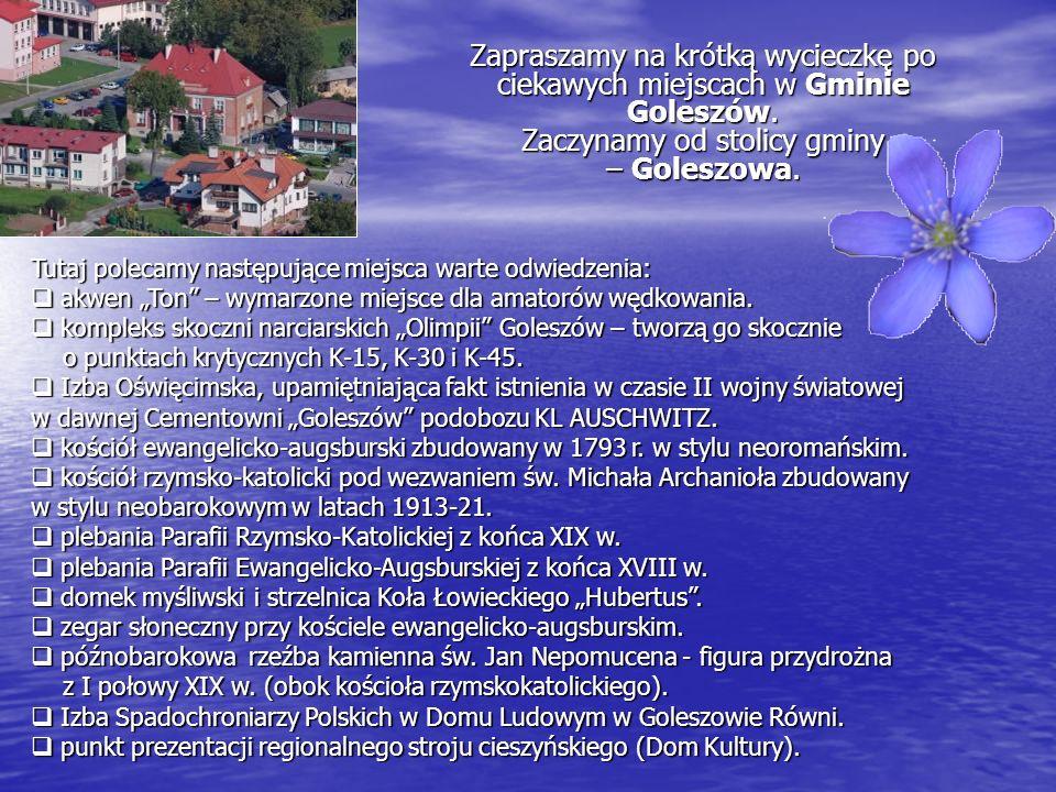 Zapraszamy na krótką wycieczkę po ciekawych miejscach w Gminie Goleszów. Zaczynamy od stolicy gminy – Goleszowa.