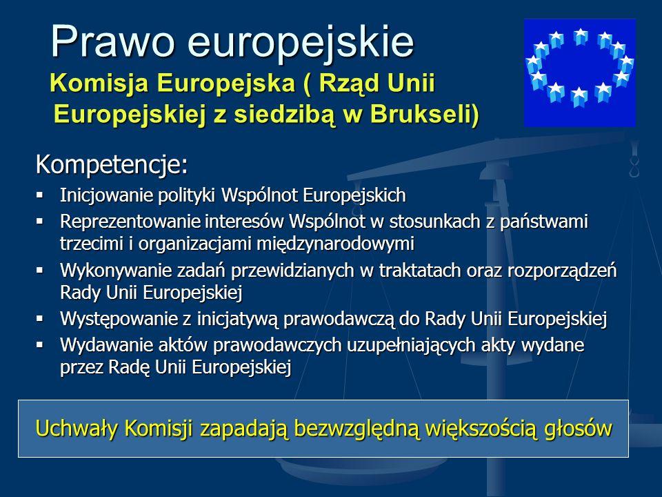 Prawo europejskie Komisja Europejska ( Rząd Unii Europejskiej z siedzibą w Brukseli)