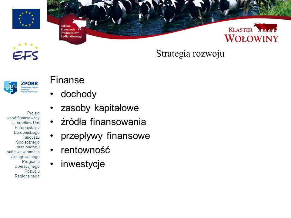 Strategia rozwoju Finanse. dochody. zasoby kapitałowe. źródła finansowania. przepływy finansowe.