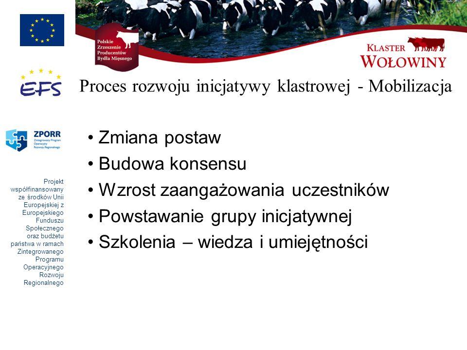 Proces rozwoju inicjatywy klastrowej - Mobilizacja
