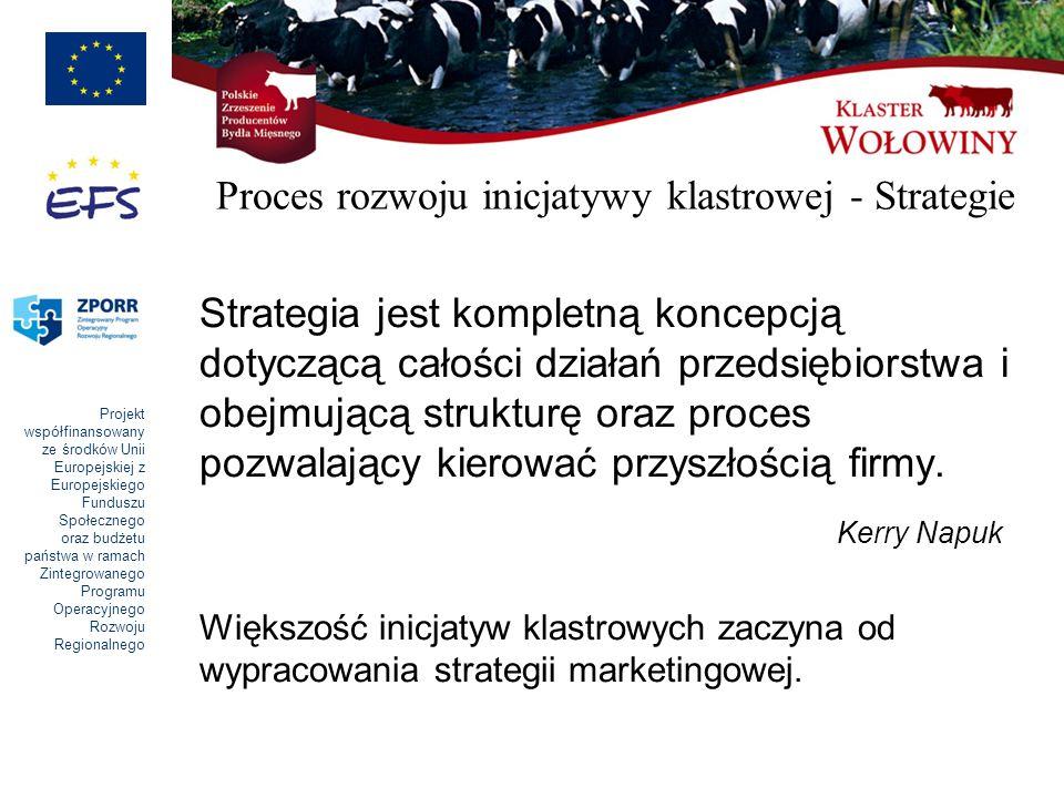 Proces rozwoju inicjatywy klastrowej - Strategie