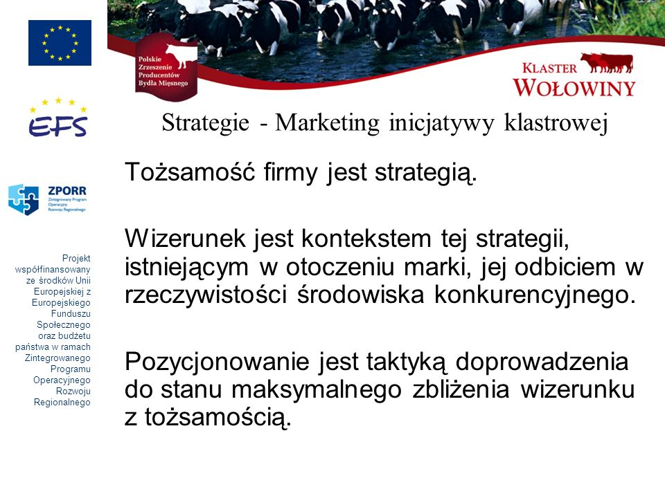 Strategie - Marketing inicjatywy klastrowej