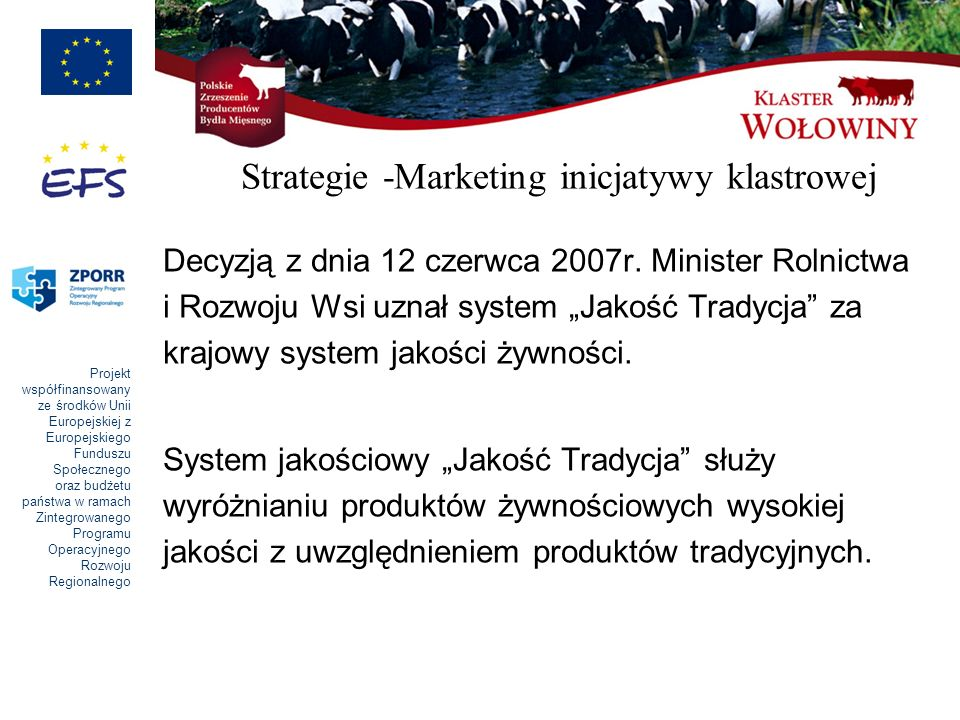 Strategie -Marketing inicjatywy klastrowej
