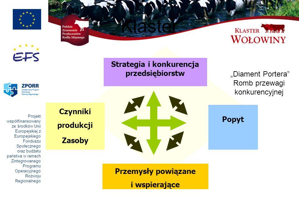 """Klaster Strategia i konkurencja przedsiębiorstw """"Diament Portera"""