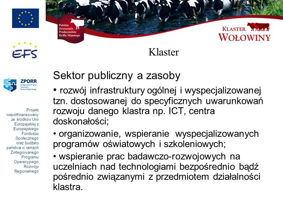 Sektor publiczny a zasoby