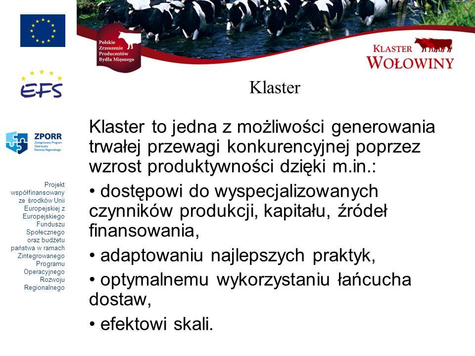 Klaster Klaster to jedna z możliwości generowania trwałej przewagi konkurencyjnej poprzez wzrost produktywności dzięki m.in.: