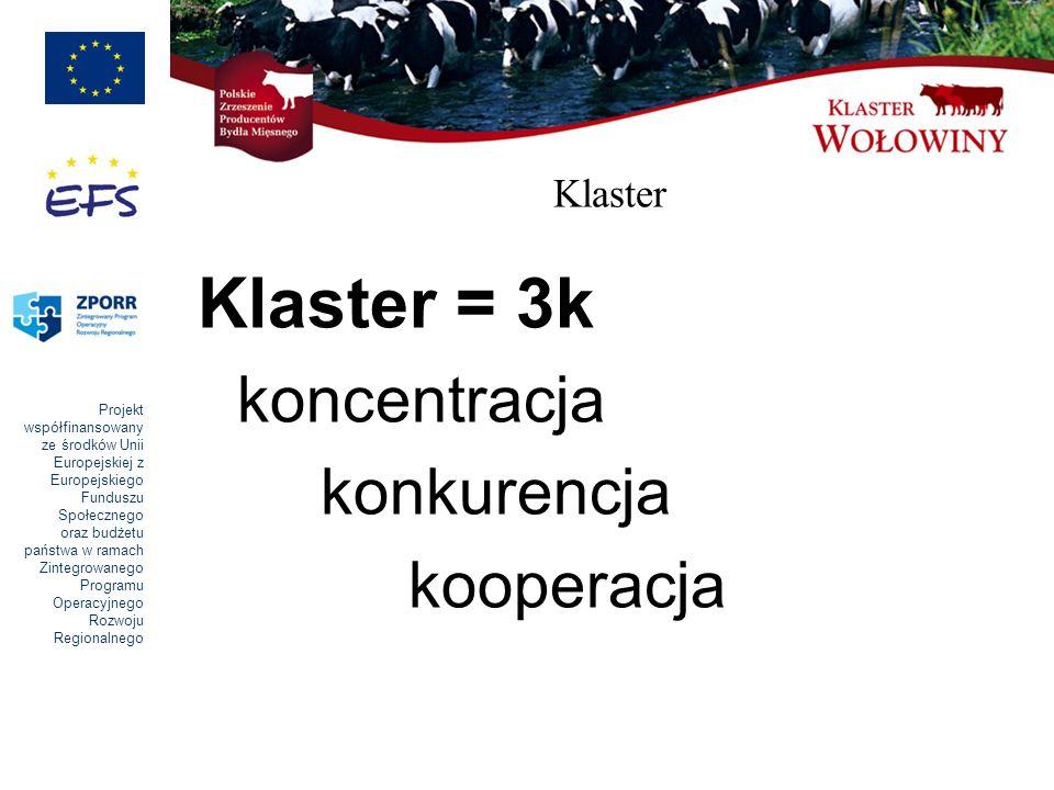 Klaster Klaster = 3k koncentracja konkurencja kooperacja