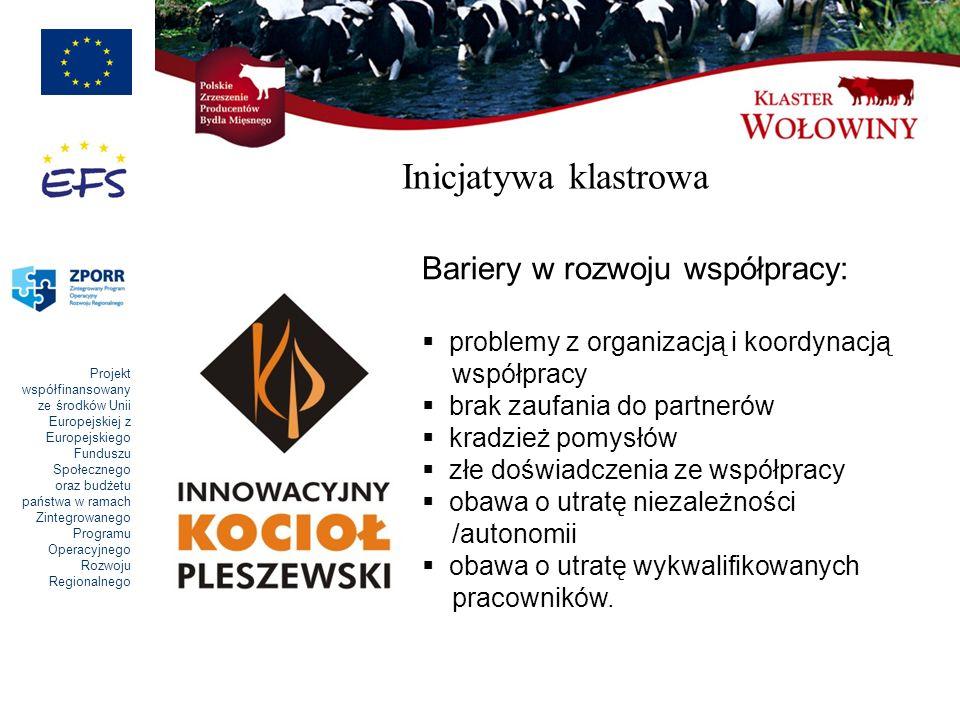 Inicjatywa klastrowa Bariery w rozwoju współpracy: